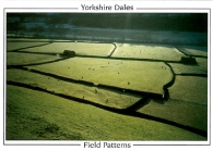 Field Patterns, Yorkshire Dales, A5 Greeting Cards