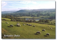 Yorkshire Dales A5 Greetings Cards