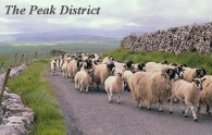 The Peak District Picture Magnets