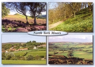 North York Moors A5 Greetings Cards