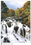 Swallow Falls, Betws-y-Coed postcards