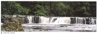 Upper Falls, Aysgarth postcards