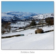 Yorkshire Dales Square Cards